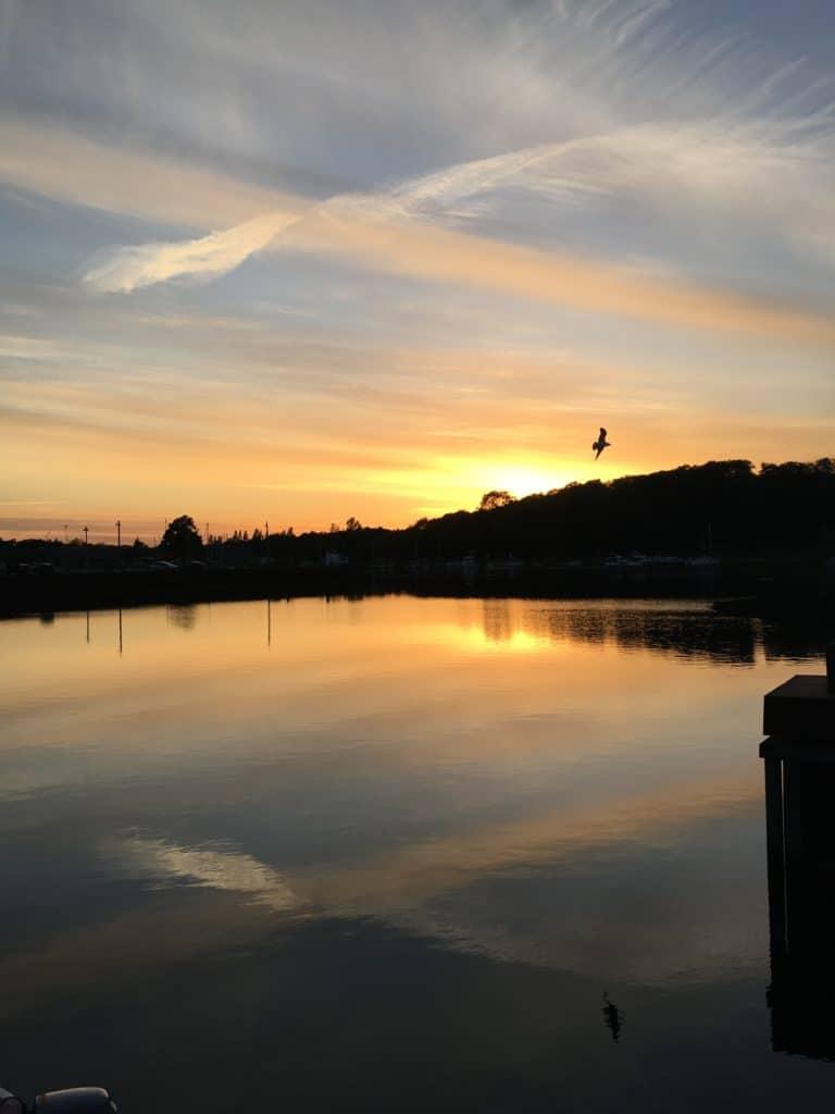 Håber juni byder på masser af flotte solnedgange på Odense havn