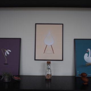 Vintergækken, dråben og svanen