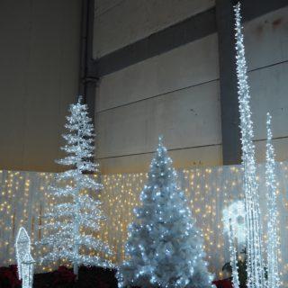 Hvidt julelandskab