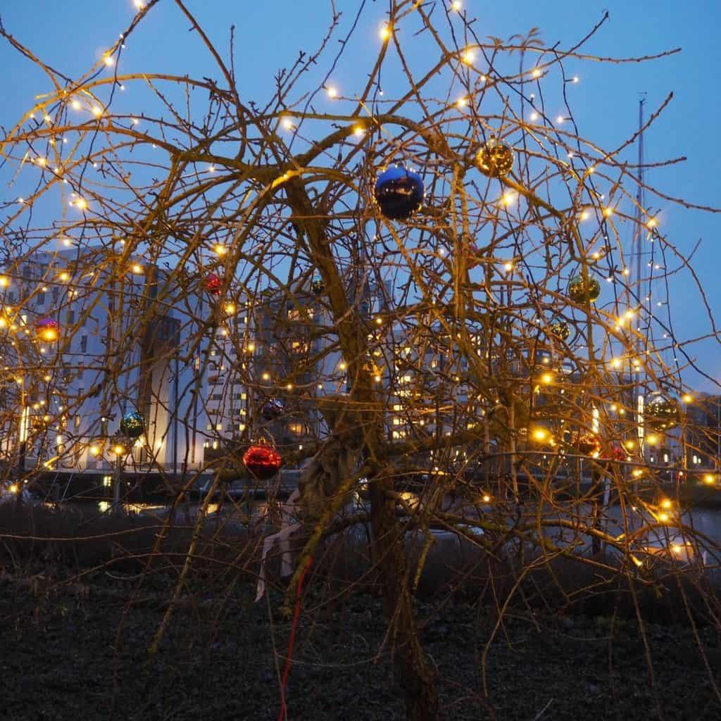 Vi nyder synet af julekuglerne i vores træer