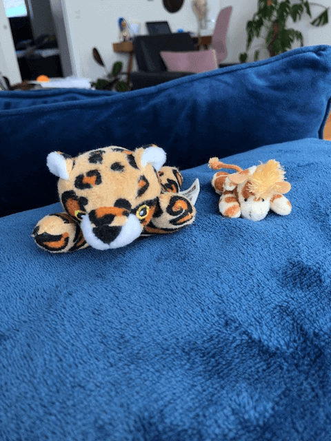 Leoparden Leoni og min lille giraf Raffa