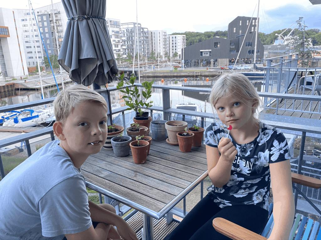 Møller klanens yngste på vores terrasse