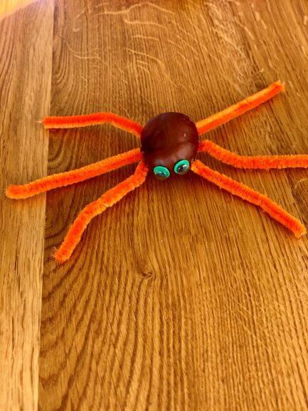 blæksprutte eller edderkop - bedøm selv