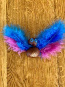 og en drengesommerfugl (med blå fjer øverst)