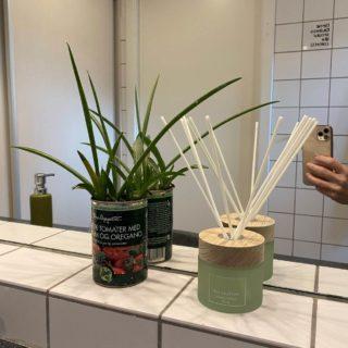 En plante og nogle duftpinde fikser også hurtigt badeværelset op