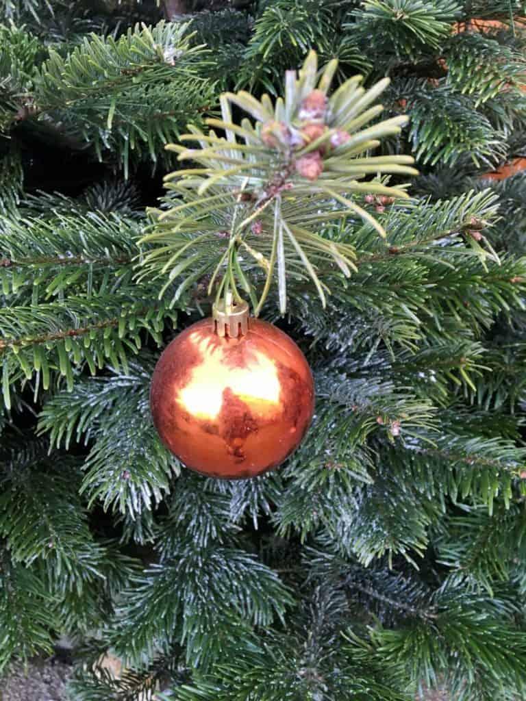 Gran og julekugler hører december til