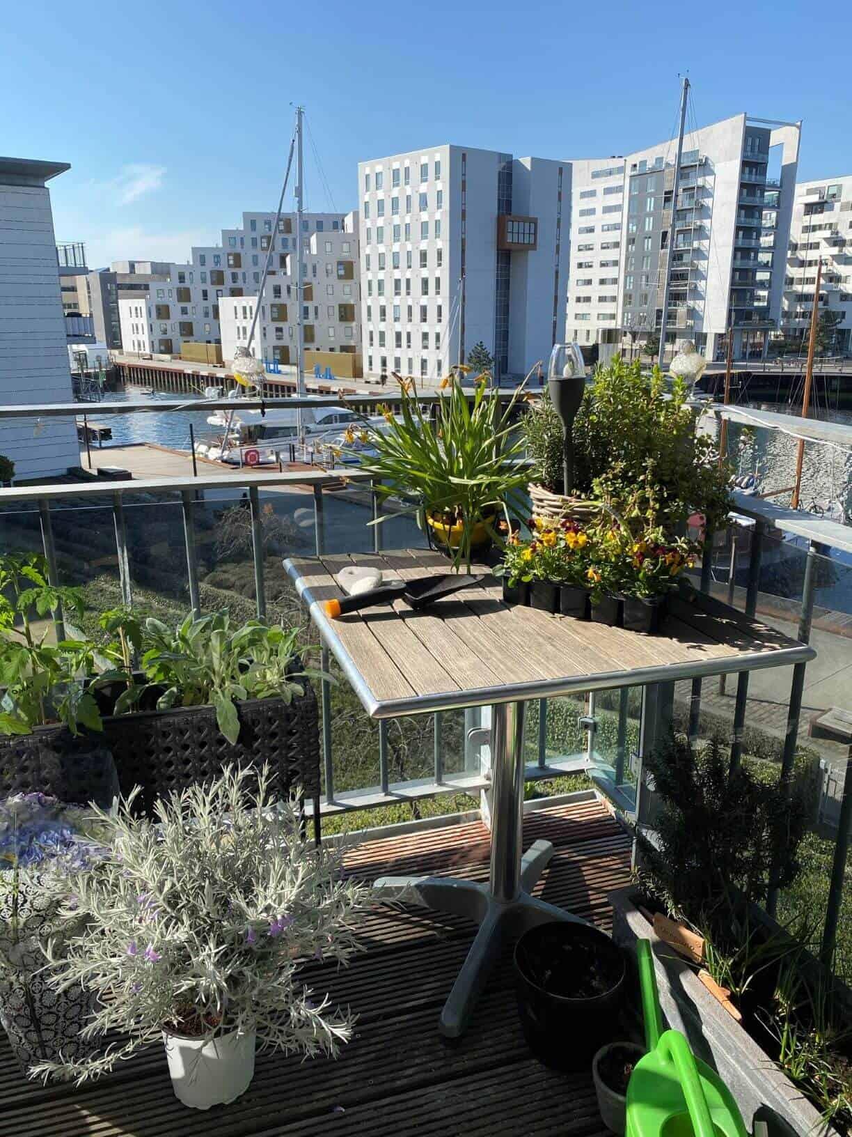 Lav din egen køkkenhave på altanen