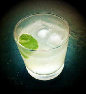 Gin&Tonic er favoritdrikken på Havnekajen