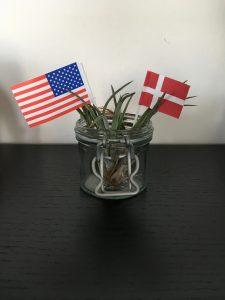 Danneborg og StarSpangled Banner