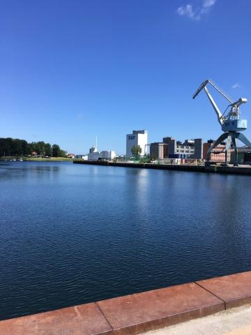 Billeder fra en varm søndag på havnen - bassin 3