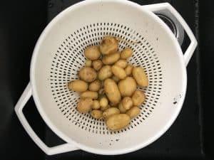 Nu med kartoffelavler på visitkortet