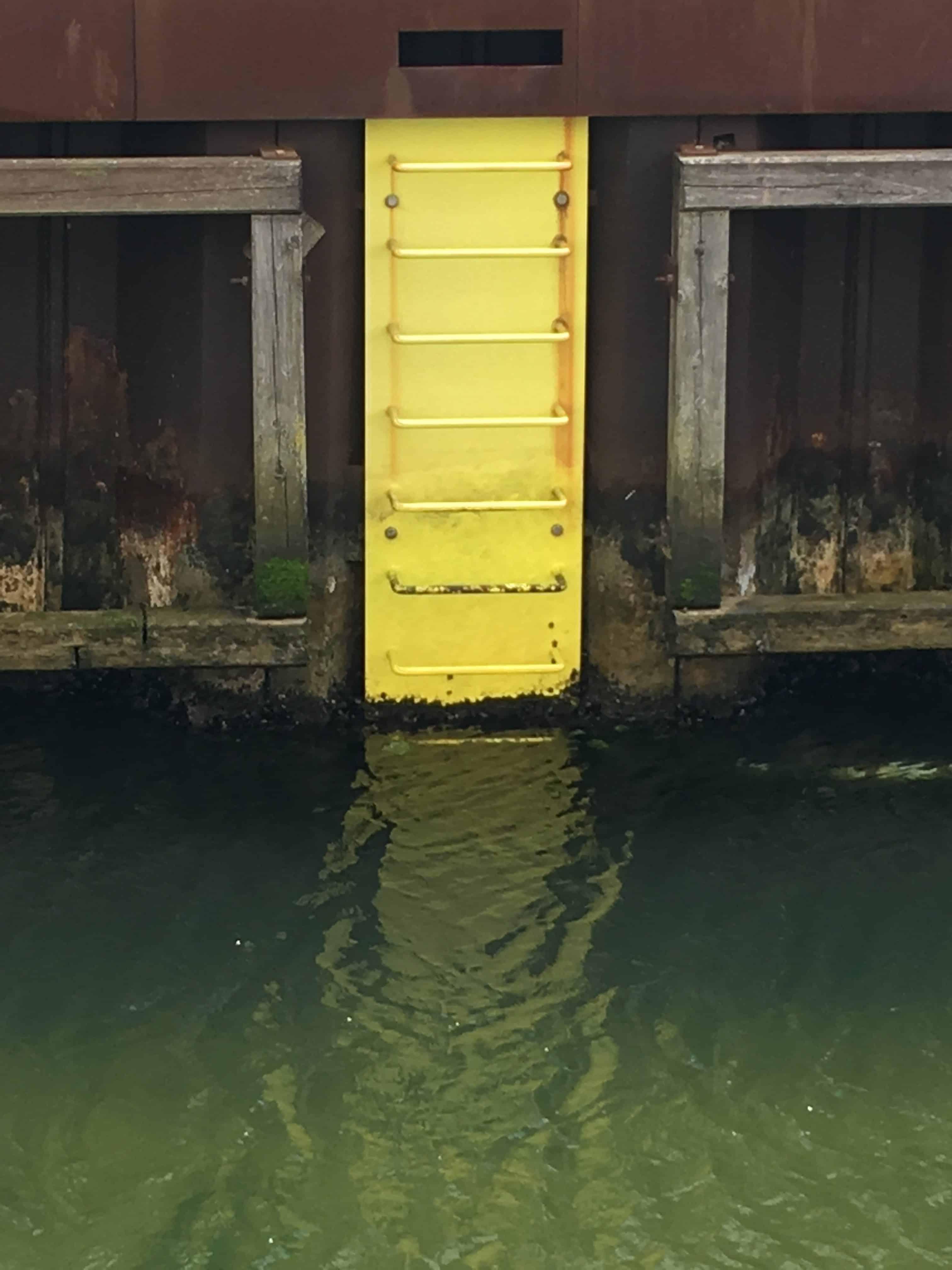 Der er gule stiger rundt om i havnebassinerne