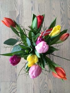 Tulipaner Dorthe og Daniel