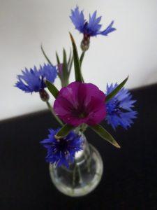 Edison vasen med markblomster