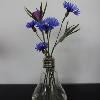 Edison vase