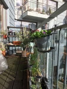 Forårsklargøring af terrassen