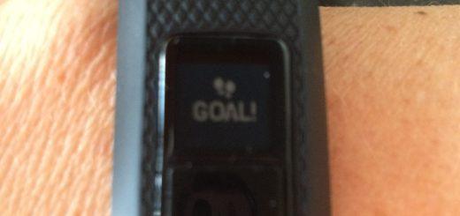 Garmin Vivofit Goal