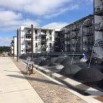Havnegopler med vandsprøjt