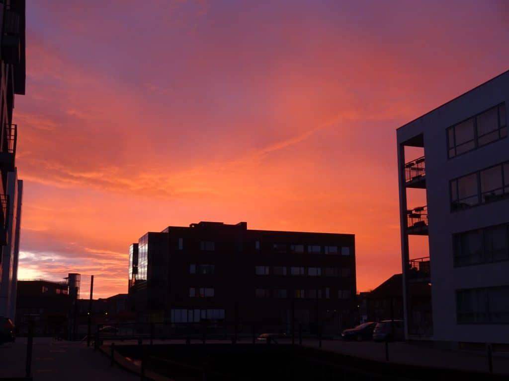 Billeder fra en farverig morgen på Odense havn