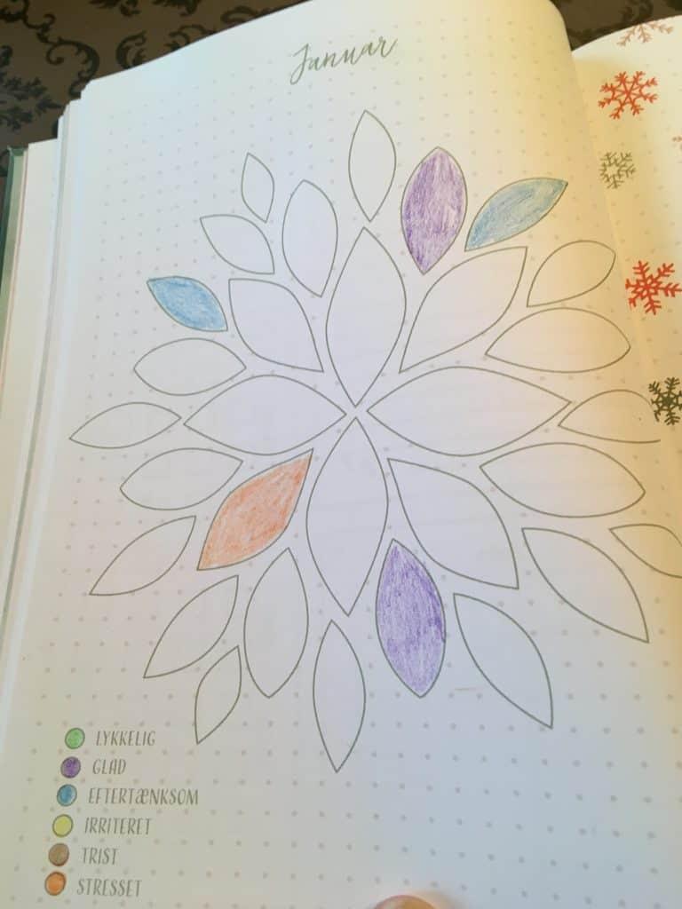 Januar - som blomst