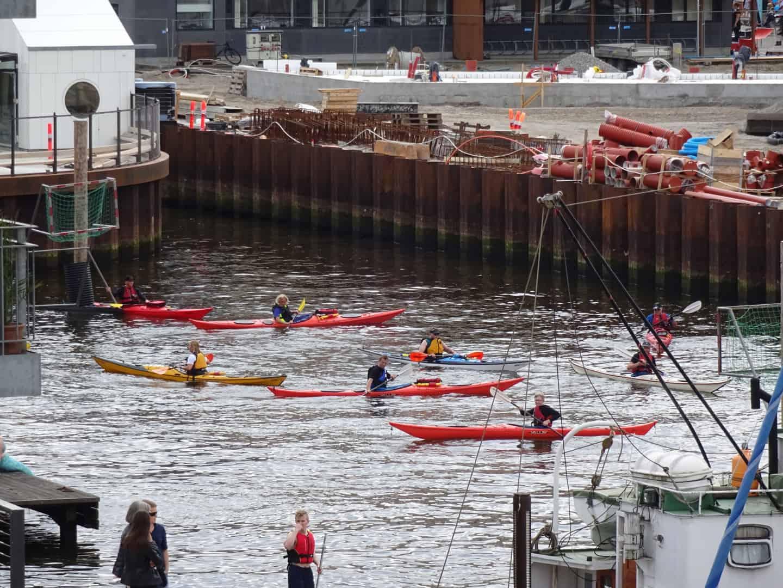 Kajakpolo i Odense havn