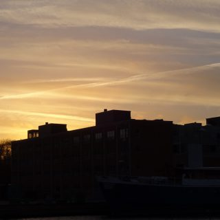 Wauv - gylden himmel