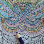 Ugle fra Natura Coloring Book